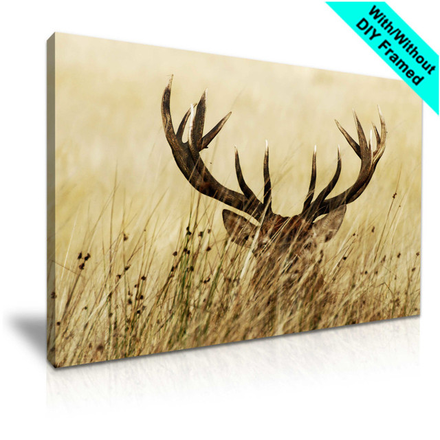 Poster and Print Lucy Elk Photo In Wild Animal Printed Deer Canvas ...