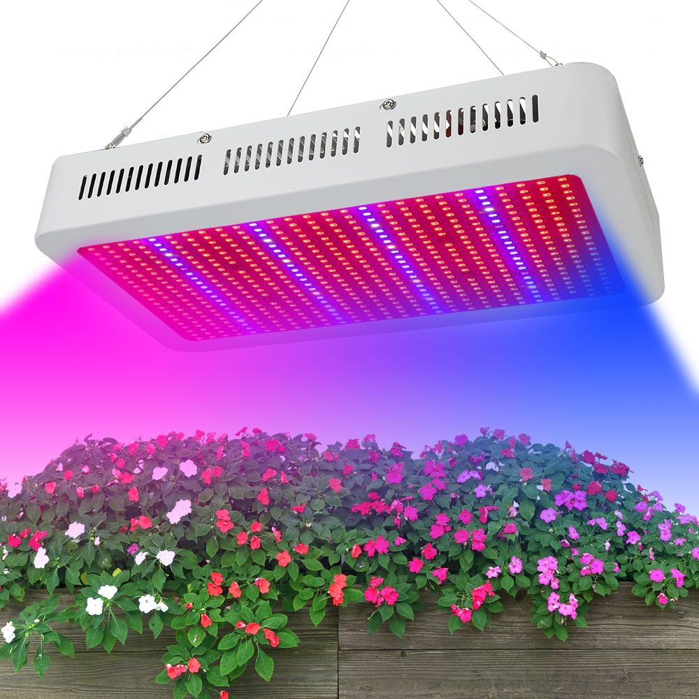 US $73 69 25% OFF|Best 600W Led Grow light Full Spectrum for grow tent  indoor Garden Greenhouse plants Veges Flowers Hydroponics plant grow  light-in
