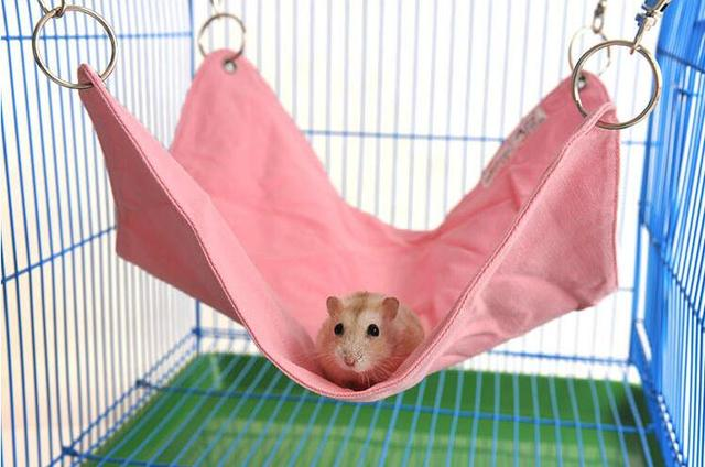 31 31cm durable canvas hanging small pet bed mat hamster rabbit chinchilla hammock guinea pig 31 31cm durable canvas hanging small pet bed mat hamster rabbit      rh   aliexpress