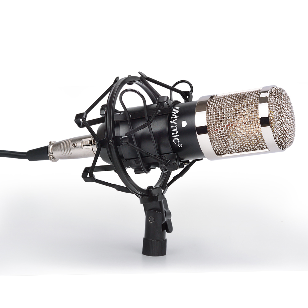 i TWO Condenser Microphone Professional 34mm Large Diaphragm Studio Vocal Mic with Metal Stand for Recording