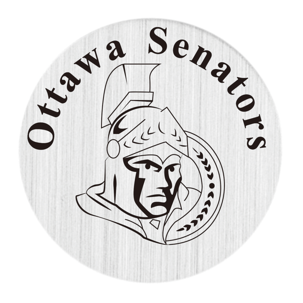 Ottawa Senators Team 10PCS wholesale sales Floating Charm Window Plate fit 30mm Locket Jewelry pendants 361 steel