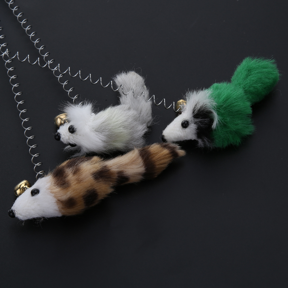3pcs funny elastic feather cat toy 3Pcs Funny Elastic Feather Cat Toy HTB17GZDNVXXXXcmXFXXq6xXFXXXc