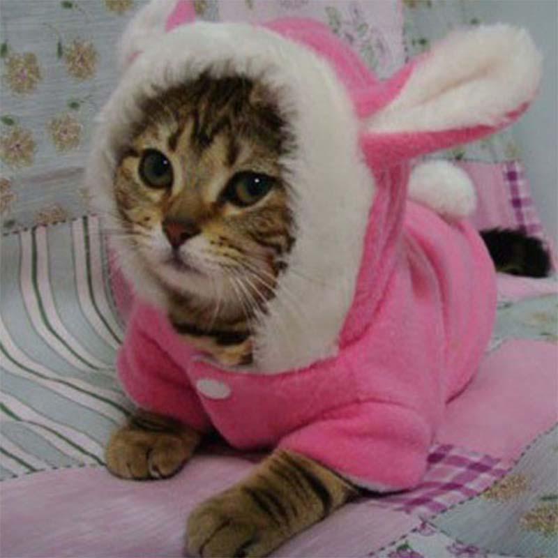 Pet Clothes Dog Cat Costume Puppy Rabbit Animals Suit Clothing Fleece Warm Dogs Coat Pet Supplies Best Price