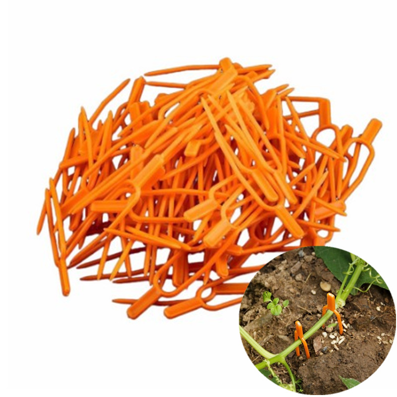50Pcs Garden Tool Plastic Garden Plant Clips For Trellis Twine Greenhouse Tool Garden Plants Bundled Vines Vegetable Clips