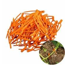 Pinzas de plástico para enrejado de plantas de jardín, herramienta para invernadero, pinzas para verduras, 50 unidades