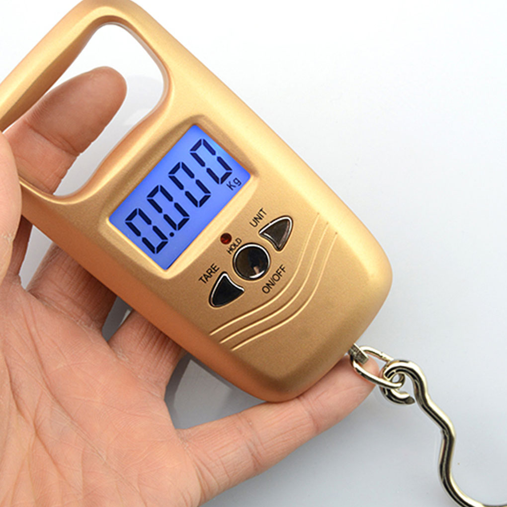 WH-A17L 50KG Double Precision Digital Scale Portable Electronic Fishing Hook Pocket Scale Hanging Luggage Weighing Steelyard
