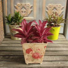 Rare Garden Succulent Grass Leaf Desert Artificial Plant Landscape Fake Flower Home Decor Free Shipping