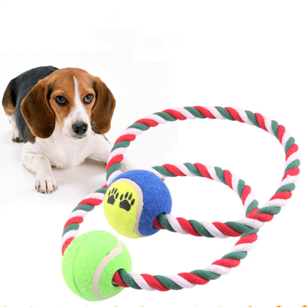 Dog Toy For Small Medium Dogs Tooth Chew Outdoor Indoor ...