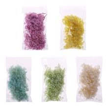 1 Bag Natural Fresh Dried Hydrangea Flower DIY Materials Bag