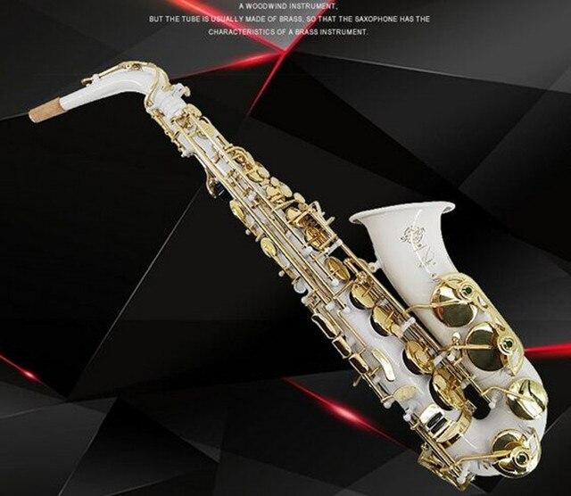 New high quality Alto Saxophone France Selmer R54 Sax Professional E flat Saxofone Musical Instruments performances Free Case
