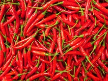 100/bag Fresh Giant pepper seeds chili chilli seeds vegetable  home garden