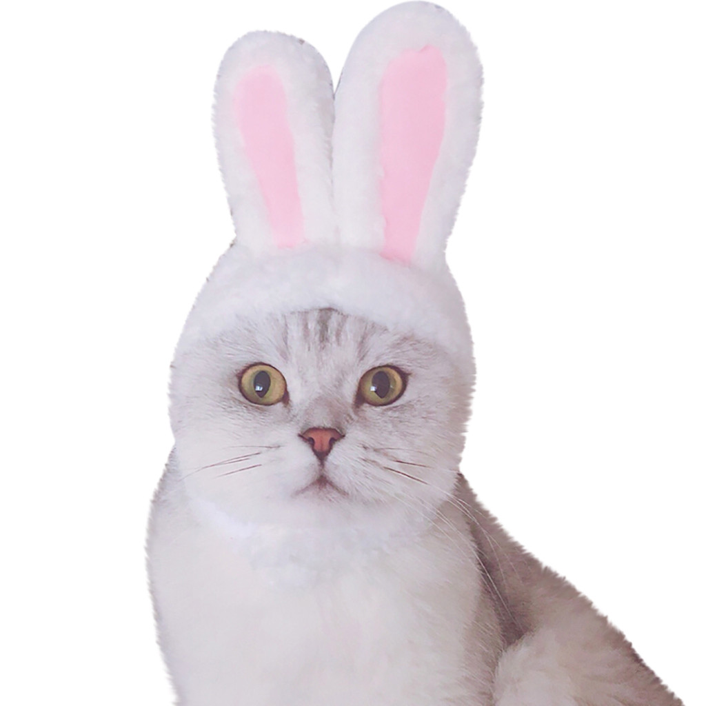 Cat bunny rabbit ears hat pet cat cosplay costumes for cat small dogs partyV!