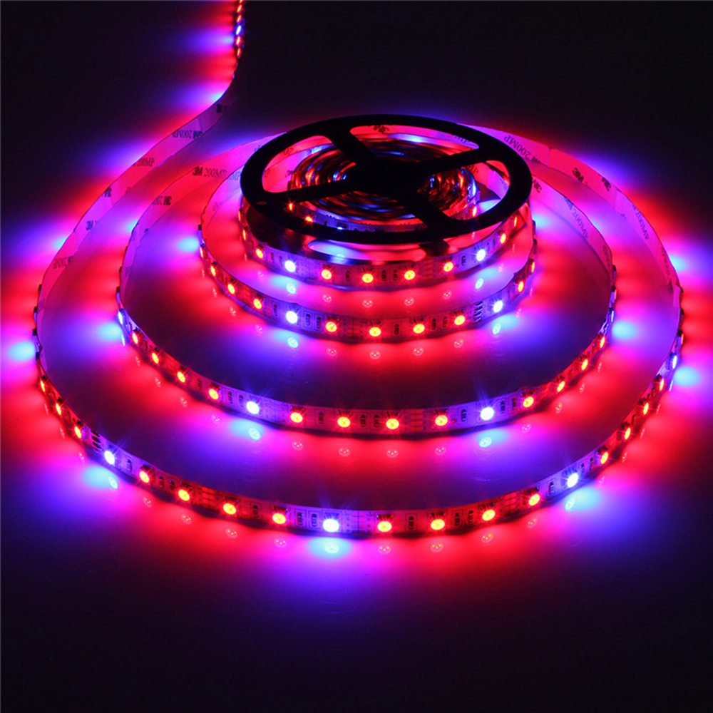 Lampu LED Grow Plant 5050 LED Strip DC12V Red Blue 3: 1, 4: 1, 5: 1, untuk tumbuh-tumbuhan Hydroponic Greenhouse, 5 m / lot 60leds / m