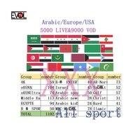 6000 активный канал 8000VOD 4 K высокой четкости Европейский лучший XXX арабский Швеция, Великобритания, Франция, Германия 1,3, 6,12