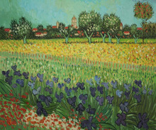 View of Arles with Irises by Vincent Van Gogh Handpainted