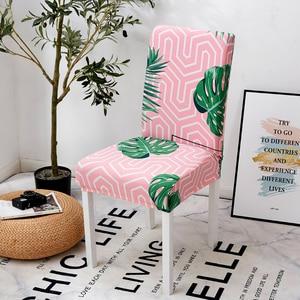 Image 2 - Parkshin mode plume housse de chaise amovible grande housse élastique housse de siège de cuisine moderne housse de chaise extensible pour Banquet