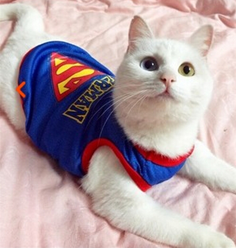 New Arrival Fashion Cat Vest Superman Pet clothes Cool Breathable Material Jersey Shirt Clothing for Cats gatos roupa para 2
