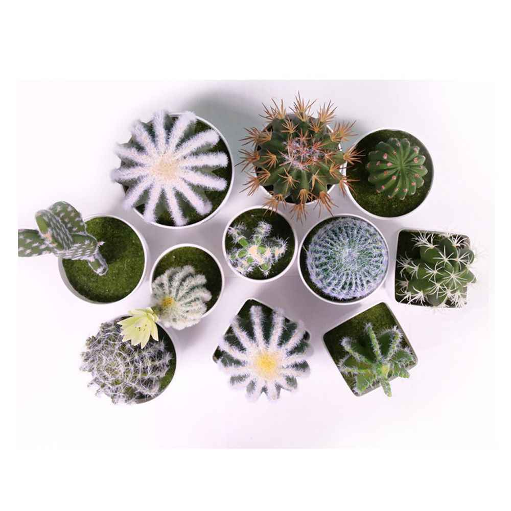 Künstliche Sukkulenten Pflanzen Garten Miniatur Gefälschte Kaktus DIY Hause Blumen Dekoration Hochzeit Büro Garten Dekorative Pflanze