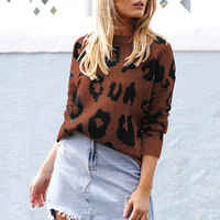 Sweater Women Leopard Printed Pullover 2019 Autumn Winter Round Neck Long Sleeve Casual Female Sweaters Outwear Femme jumpers