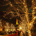 led string lights 10M 33ft 100led 5V USB powered outdoor copper wire christmas festival wedding party decoration light