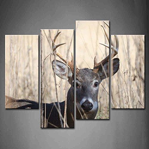 Diy White Deer Head For Woodland Inspired Decor