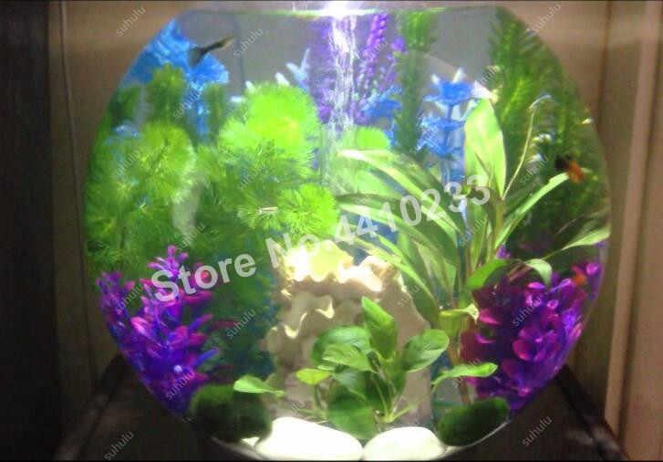 500 قطعة حوض السمك العشب النباتات المياه المائية بونساي لايف موس العشب سهلة تنمو الرئيسية تانك الأسماك المناظر الطبيعية الديكور الحلي