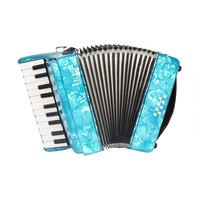 IRIN 22 Teclas 8 Baixo Acordeão de Piano Com Cintas Luvas Pano de Limpeza Instrumento Musical Para Alunos Iniciantes de Ensino Childern