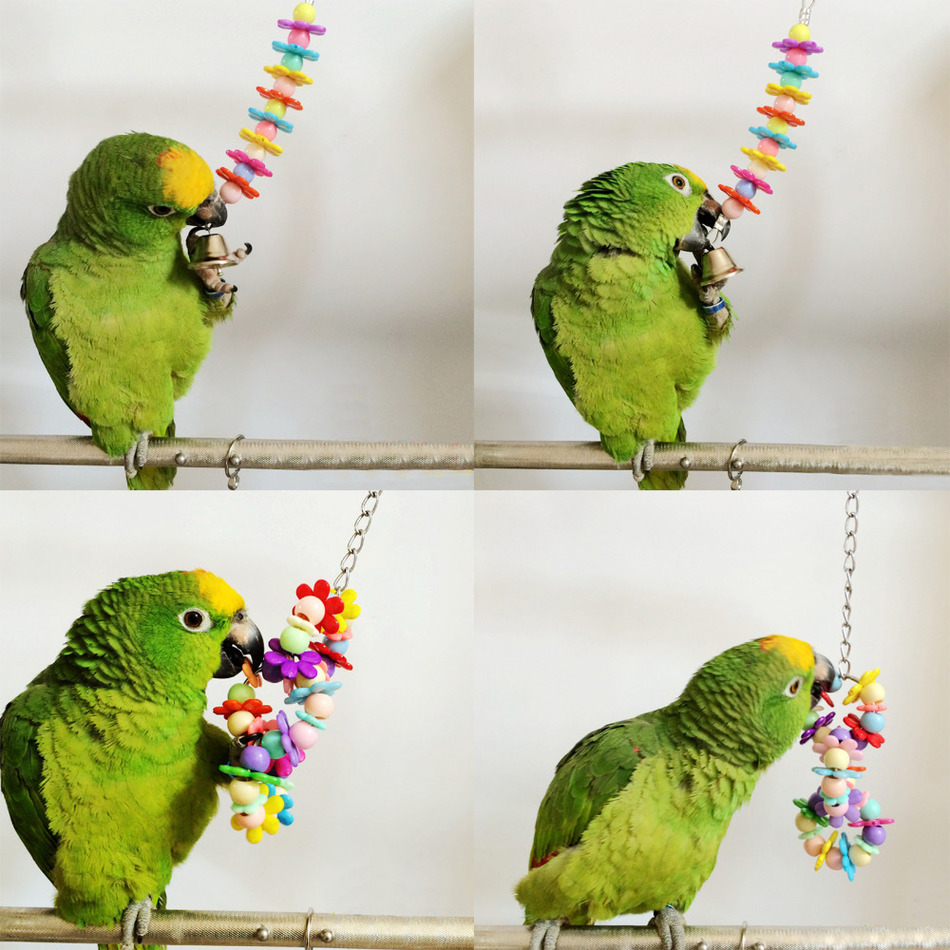 Pet Bird Toys : Colorful pet bird toys parrot swing cage toy parakeet