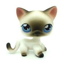 лучшая цена Rare Pet Shop Lps Toys Cat #5 #391 Dog Collie Brown Dachshund Cocker Spaniel White Great Dane Short Hair Standing