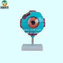 Eyeball Amplification Model BIX-A1052 WBW263