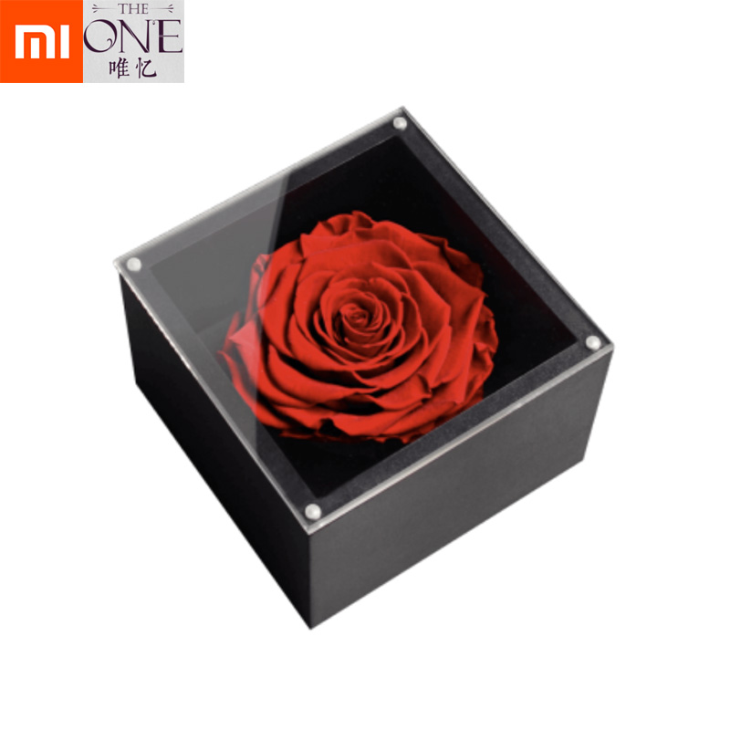 Xiaomi Mijia The ONE Real Rose Flower Forever for Love Christmas Gifts