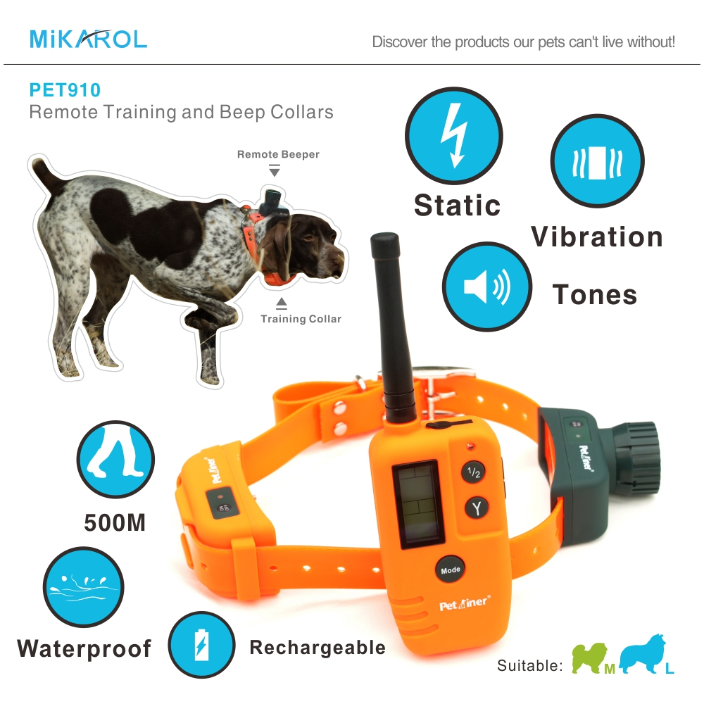 Training A Dog With A Shock Collar Video