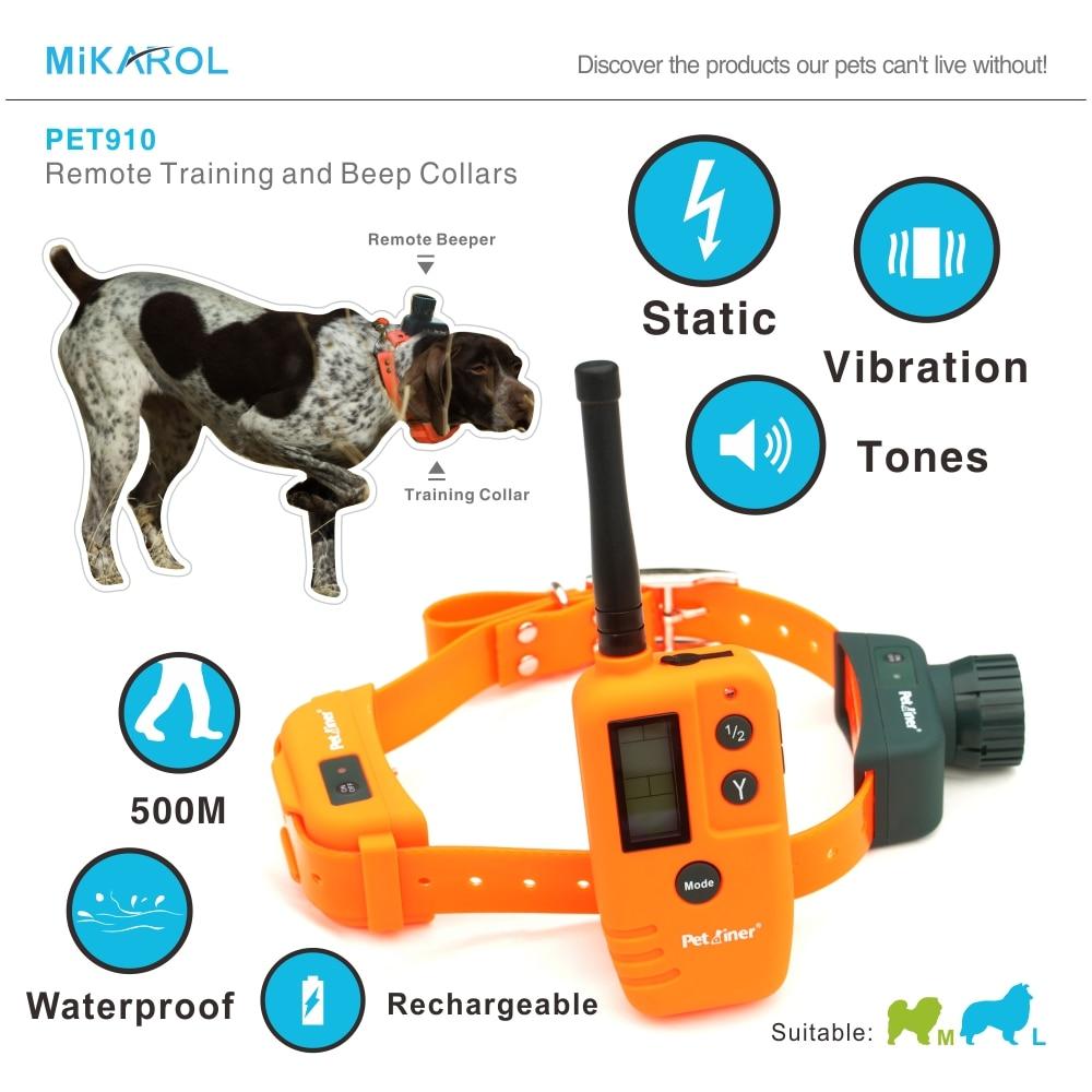 Hunting Dog Training With Shock Collar