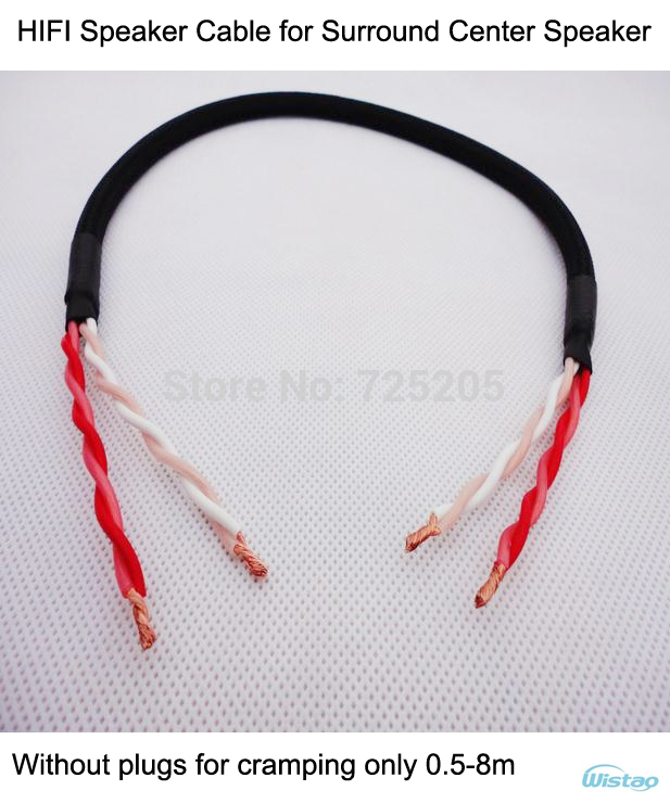 IWISTAO HIFI Speaker Cable for Music Center Surround Center Speaker With Japan origin Canare Cable No