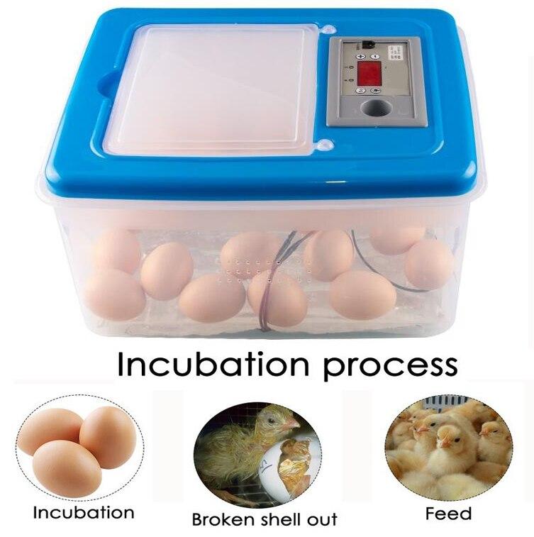 Mini 32 Egg Incubator Poultry Incubator Brooder Digital Temperature Hatchery Egg Incubator Hatcher Chicken Duck Bird Pigeon