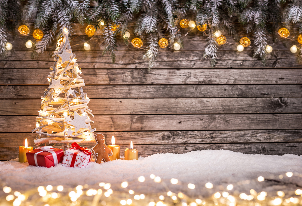 Christmas Holiday Background Photograph By Anna Om: Christmas Tree Photography Background Studio Photo Prop
