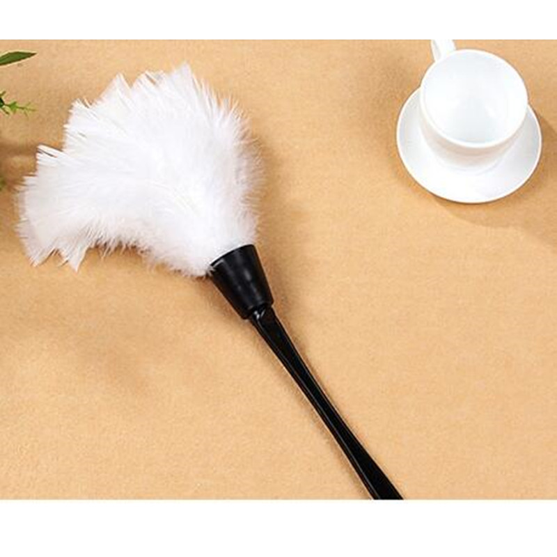 feather brush