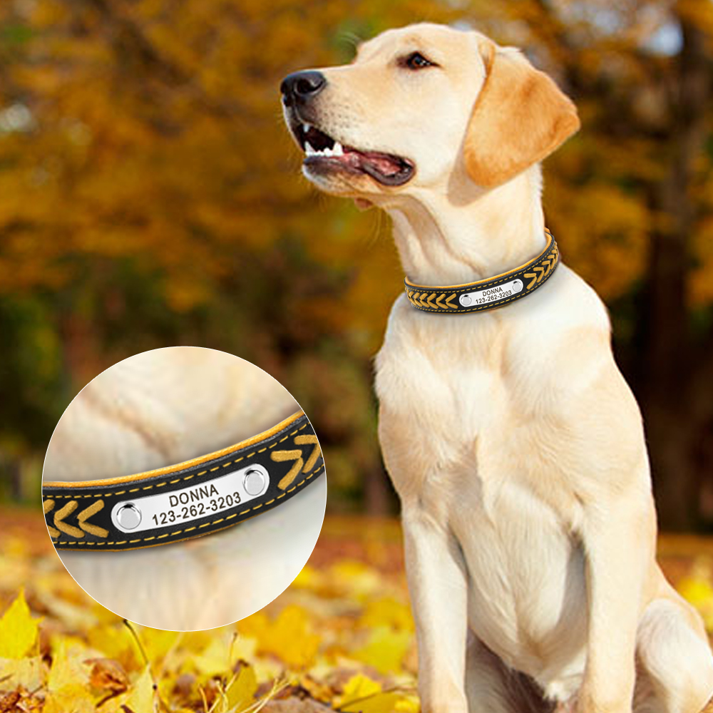 Custom Leather Dog Collar Personlig Graveret Puppy Cat Dog Tag krave - Pet produkter - Foto 5