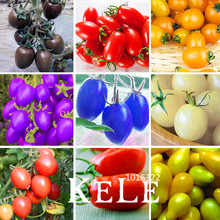 New Fresh Seeds 9 Kinds Of Cherry Tomatoes Seed Fruits Seed Vegetables Potted Bonsai Potted Plant Tomatoes Seeds 100 Pcs/bag,#OZ
