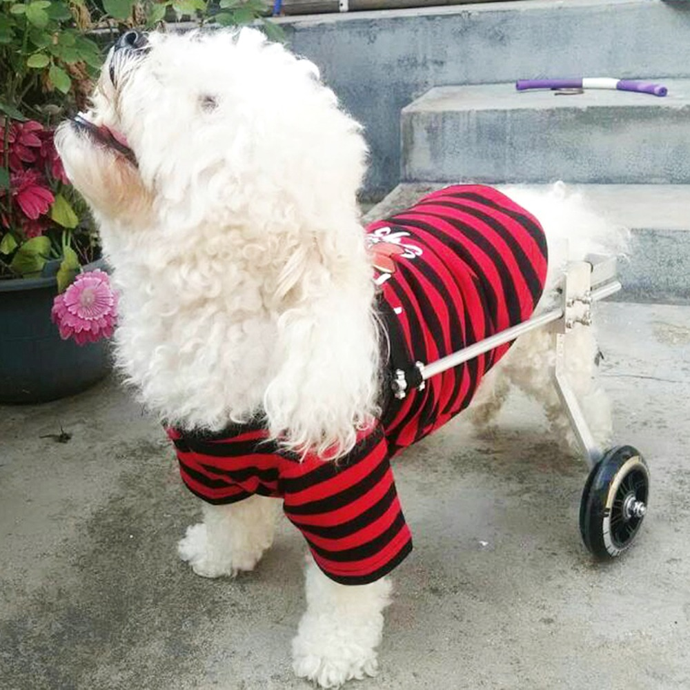 2 Wheel Handicapped Paralyzed Pet Wheelchair General Paralysis Dog Scooter Disabled Cat Dog Rehabilitation Wheelchchair SML