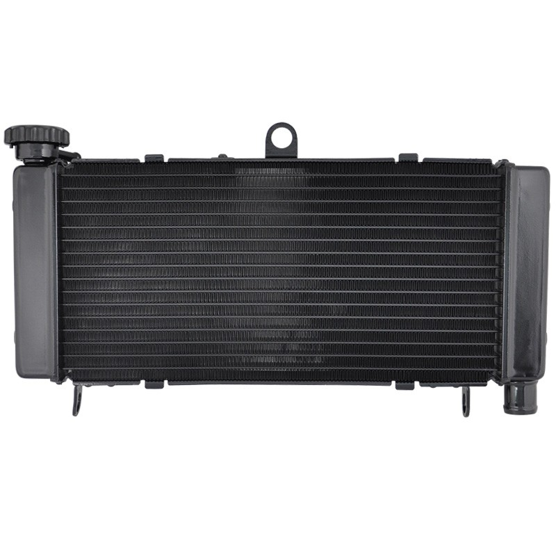 LOPOR Motorcycle Radiator for Honda CB600F Hornet 600 1998 1999 2000 2001 2002 2003 2004 2005 98 99 00 01 02 03 04 05