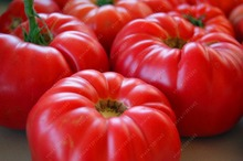 100 pcs/bag Beef Hybrid giant tomato seeds, Extra-meaty, Extra-tasty Tomato organic food seeds vegetables bonsai pot plant