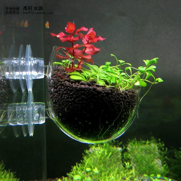Glass Pot Plant Cup Seed Planter Aquatic Planting Cup Crystal Glass Aquarium Decoration(China)