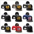 Мода WU TANG Бейсболки Новый WU-TANG мужская Snapback Вышивка Хип-Хоп Регулируемые Шляпы Женщин Casquette Повернет Вспять Оптовая