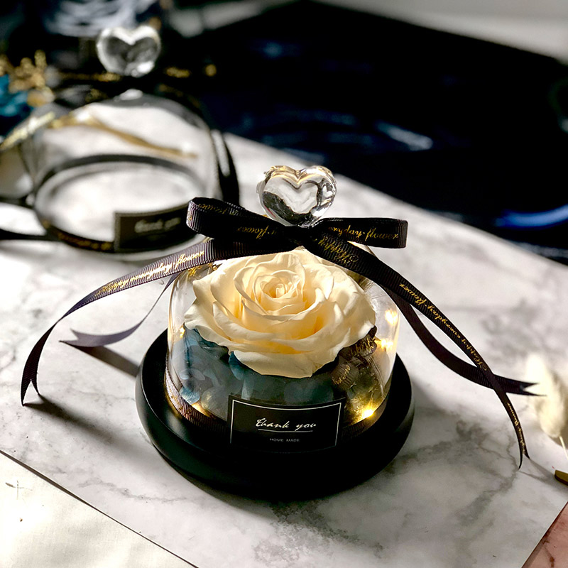 Новинка, красивая и чудовищная Роза в стеклянном куполе, светодиодный светильник, украшение для дома на День святого Валентина, рождественские подарки - Цвет: champagne Love