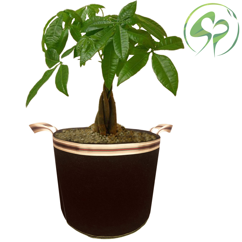 5 10 20 30 40 65 Gallon DIY Plant Grow Bags Planting Container Garden Pots Planters Vegetable Planting Bags Home Garden Supplies in Grow Bags from Home Garden