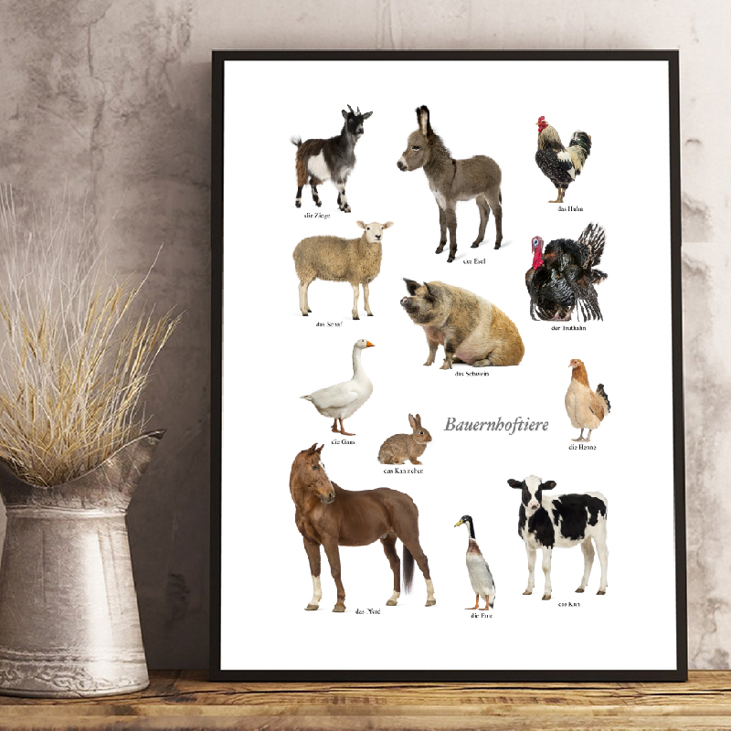 Farm Animal Educational German Prints Farmhouse Posters Wall Art Home Decor Modern Farm Animals Photo Pictures Canvas Painting Painting Calligraphy Aliexpress