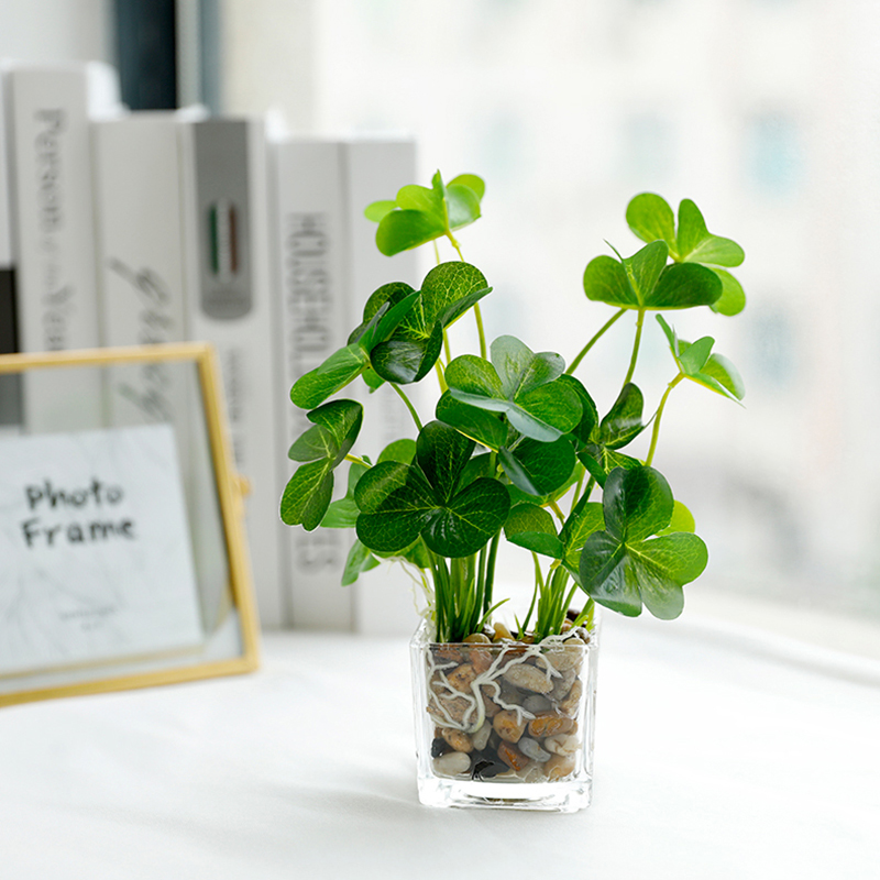 Erxiaobao Fake Grass Simulation Bonsai Potted Artificial Plants Leaf with Glass Pot Green Peperomia Clover Home Decoration Best Children's Lighting & Home Decor Online Store