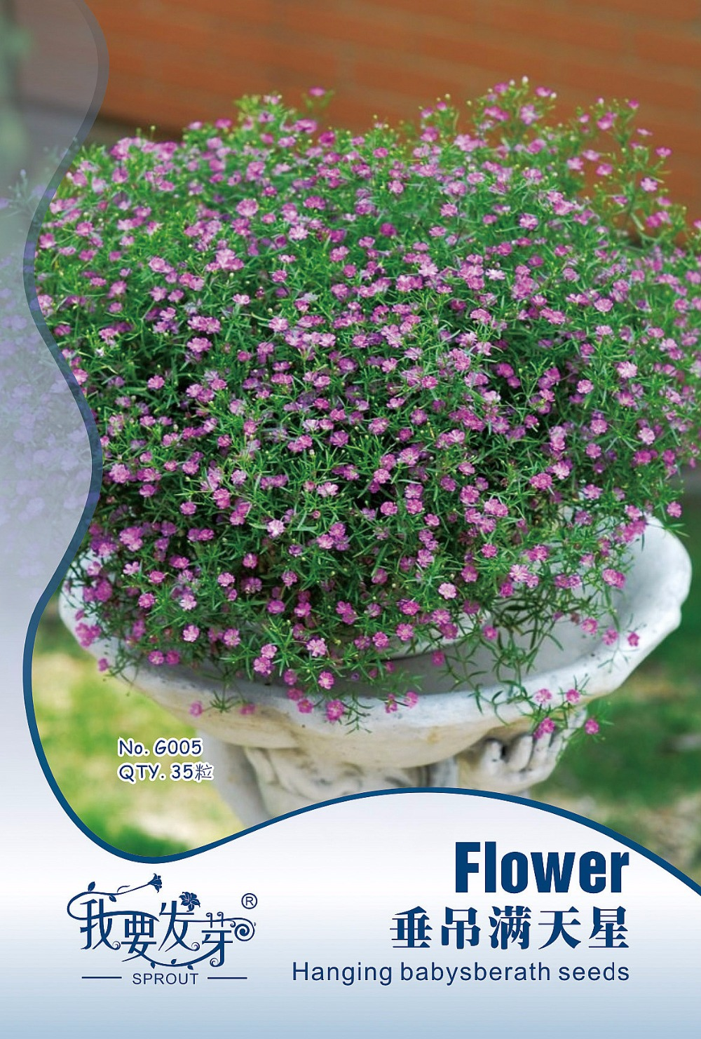Original pack pink babys breath flower seeds balcony potted 5 mightylinksfo