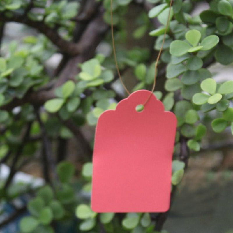 100 Pcs Plastic Plant Labels Waterproof Strip Line Garden Hanging Tags Pot Markers Signs Planting Tools Pink 3.6*2.5cm